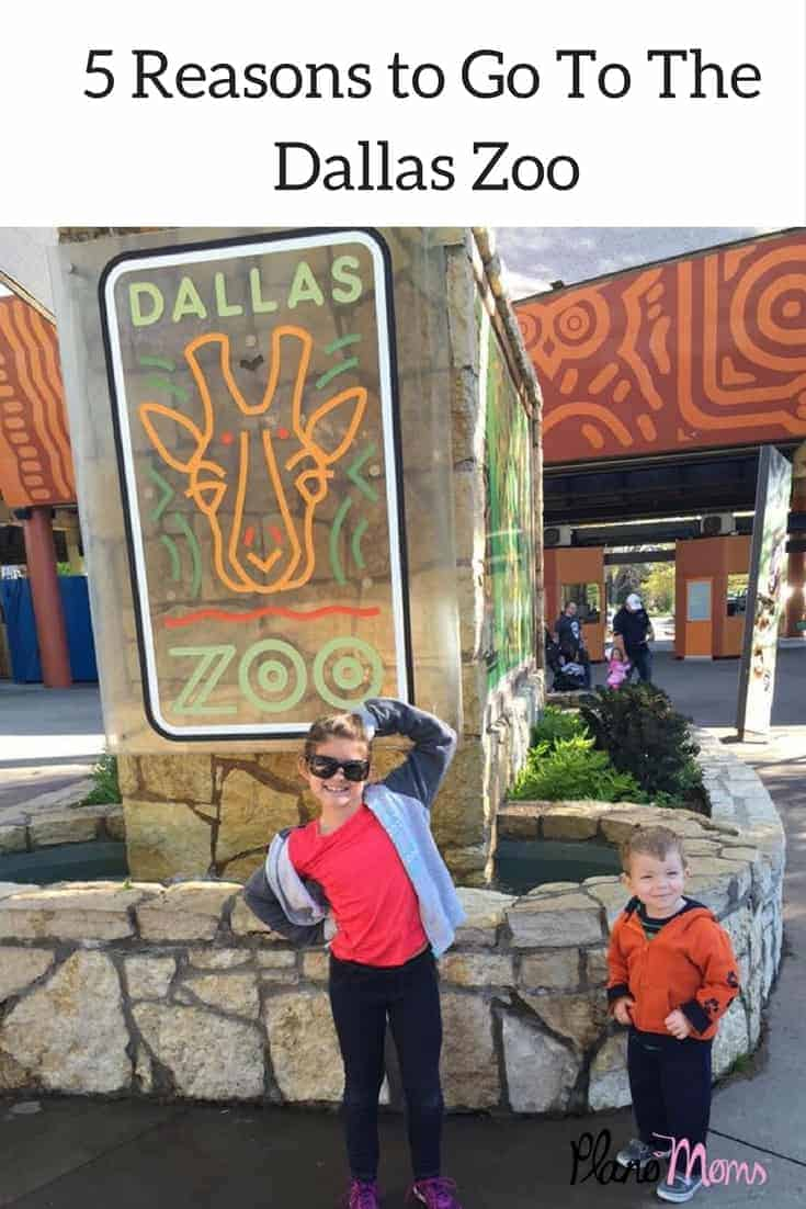 5 Reasons to Go tothe Dallas Zoo1 (1)