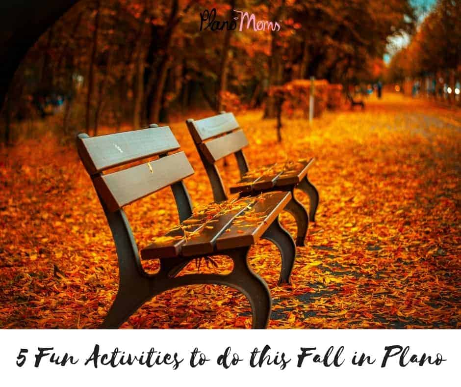 5 Fun Activities to do this Fall in Plano