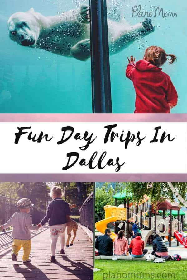 Day Trips in Dallas TX