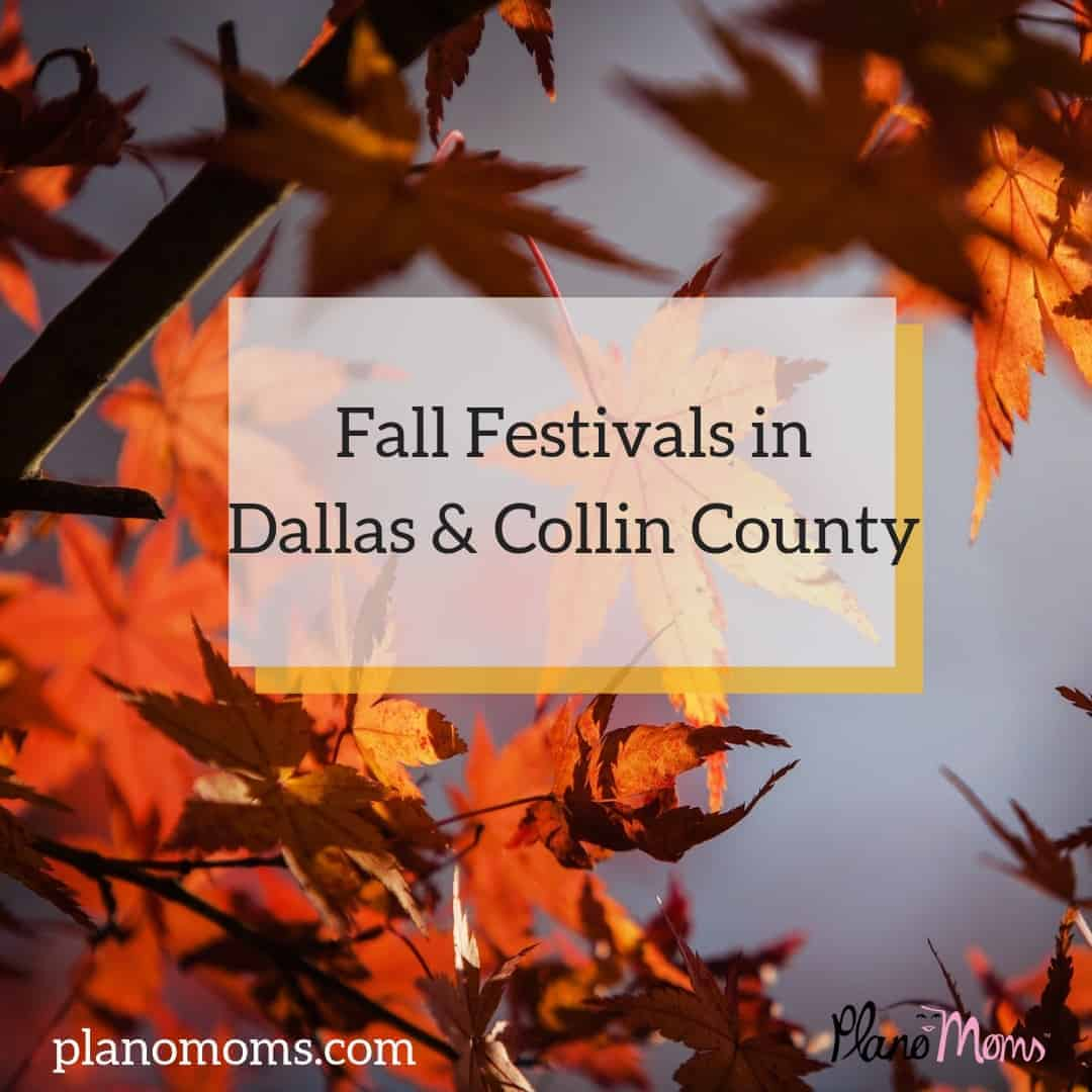 Fall Festivals near me