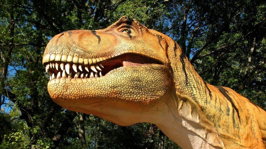 Heard Museum Dinosaur