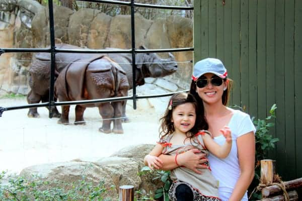 Animals up close at Fort Worth Zoo