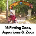 Shady playgrounds for Toddlers 4