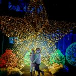 Luminova Holidays Christmas Lights